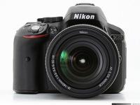 Dig. Camera Nikon D5300 + 18-55VR AF-P KIT