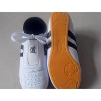 Karate Taekwondo Kung Fu Tai Chi Martial Training Shoes Footwear Sneakers SH1200