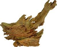 Мангровано дрво мало 19-23 см