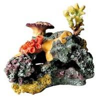 Корален гребен егзотик 32 цм