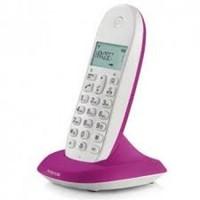 Telephone Motorola C1001L Violet