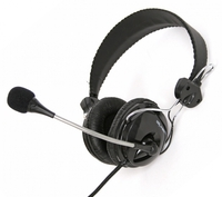 Headphones w/Mic Fiesta FIS-066 Black