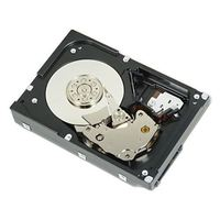 DELL 1TB 7.2K RPM NLSAS 6Gbps 3.5in Hot-plug Hard Drive,13G,CusKit