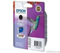 Sky Horse T0801 for Epson R285
